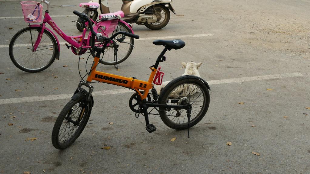 Fahrrad Hummer