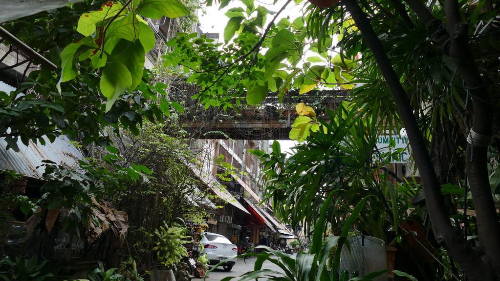 Grüne Oase mitten in Bangkok