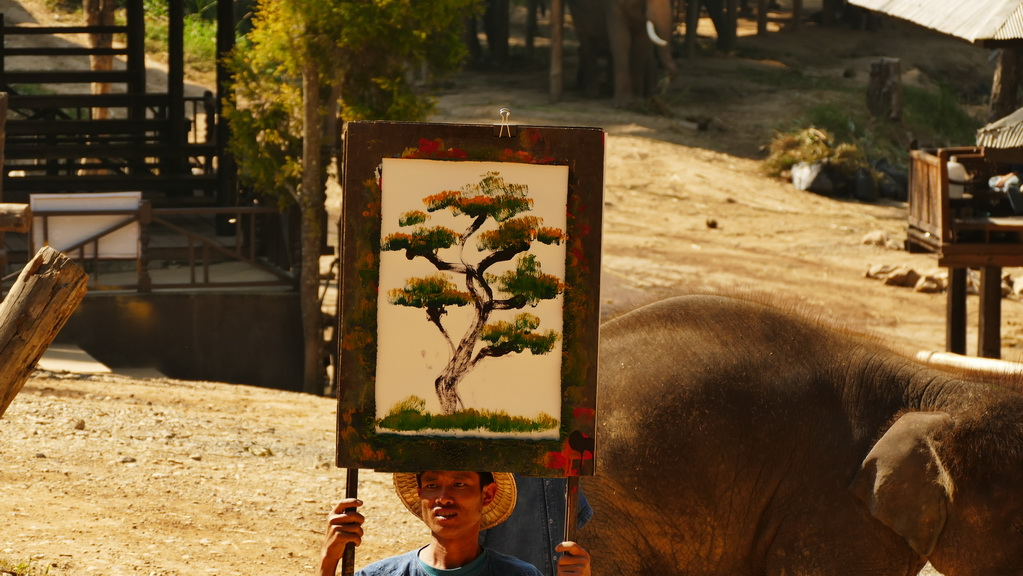 chinagmai-elephant-painter
