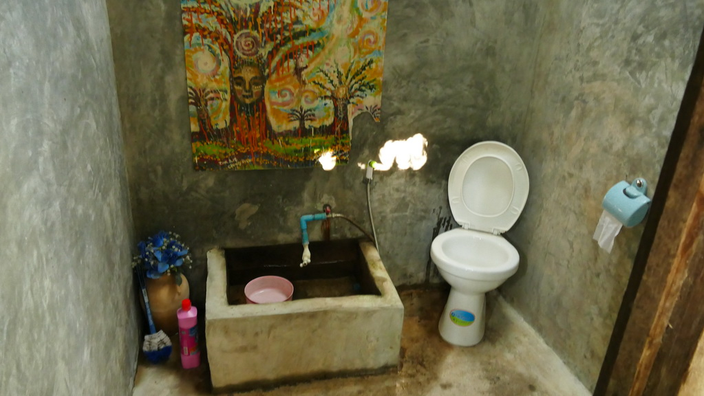 toilette-black-cat