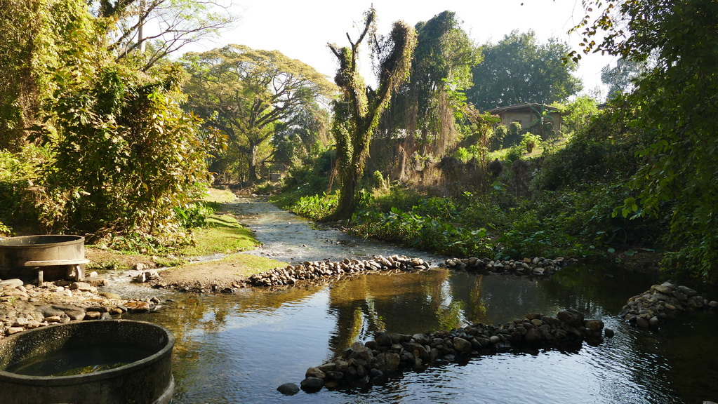 hot-springs-chiang-dao