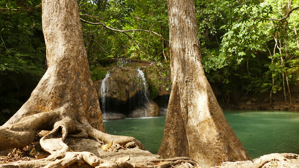 Erawan Wasserfall - zwischen den Bäumen