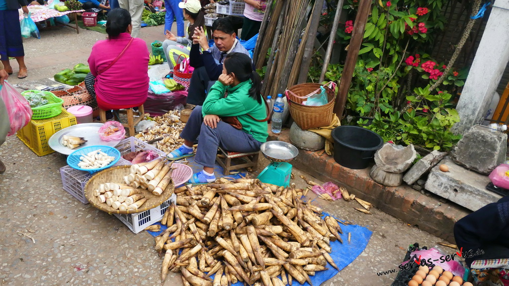 markt-laos-luang parabang