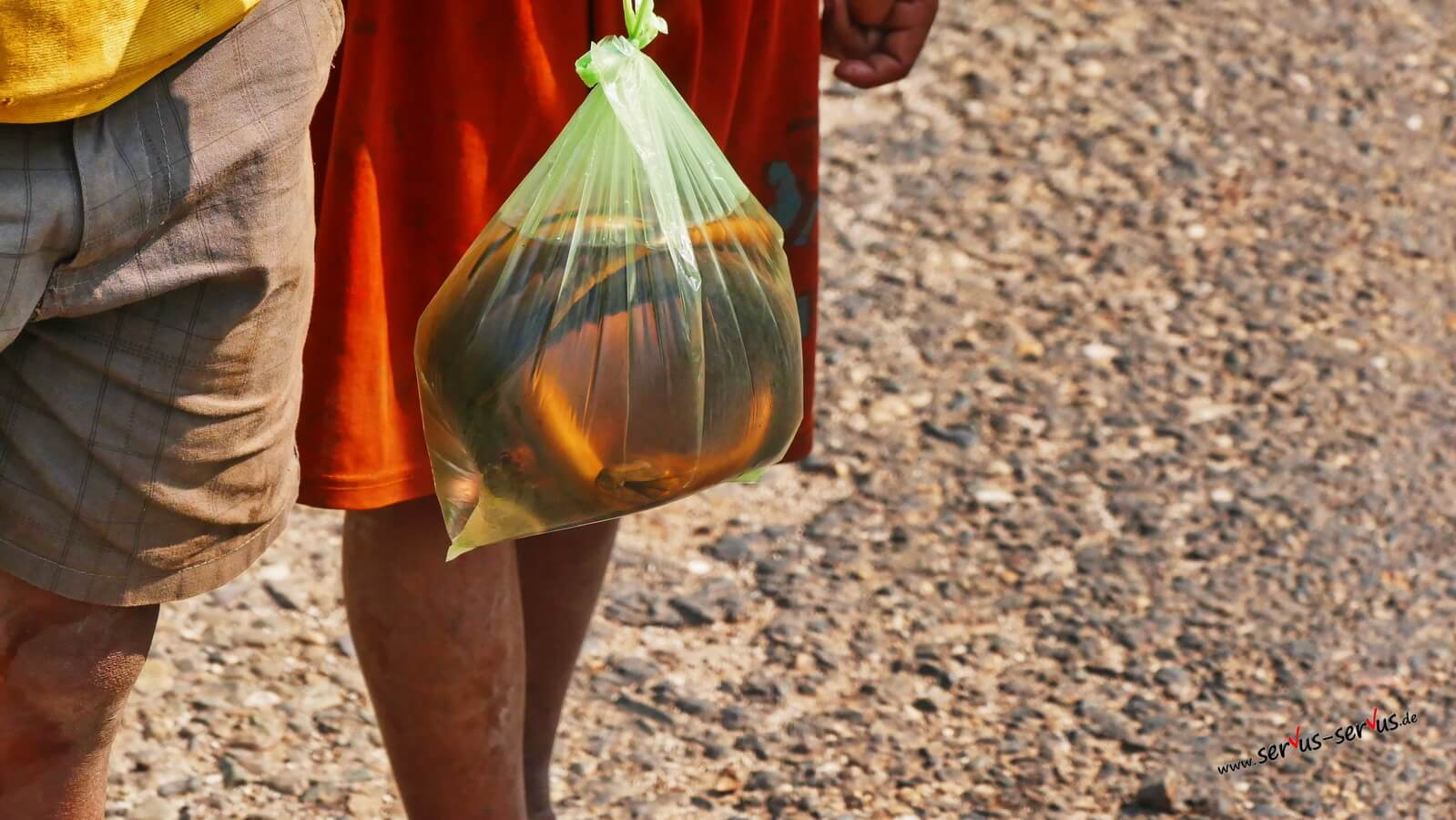 Kinder verkaufen Fisch