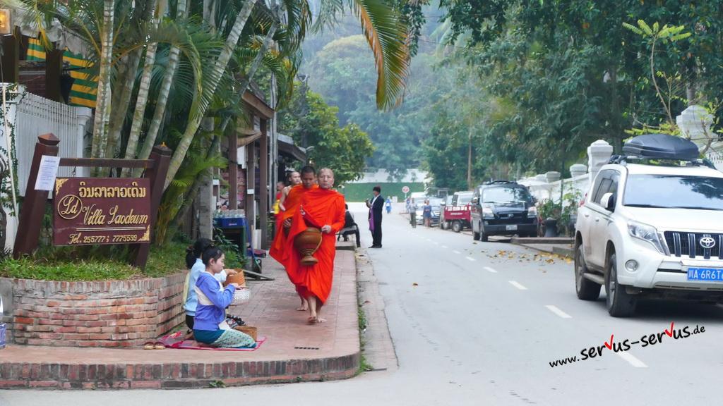 mönche-luang prabang-laos