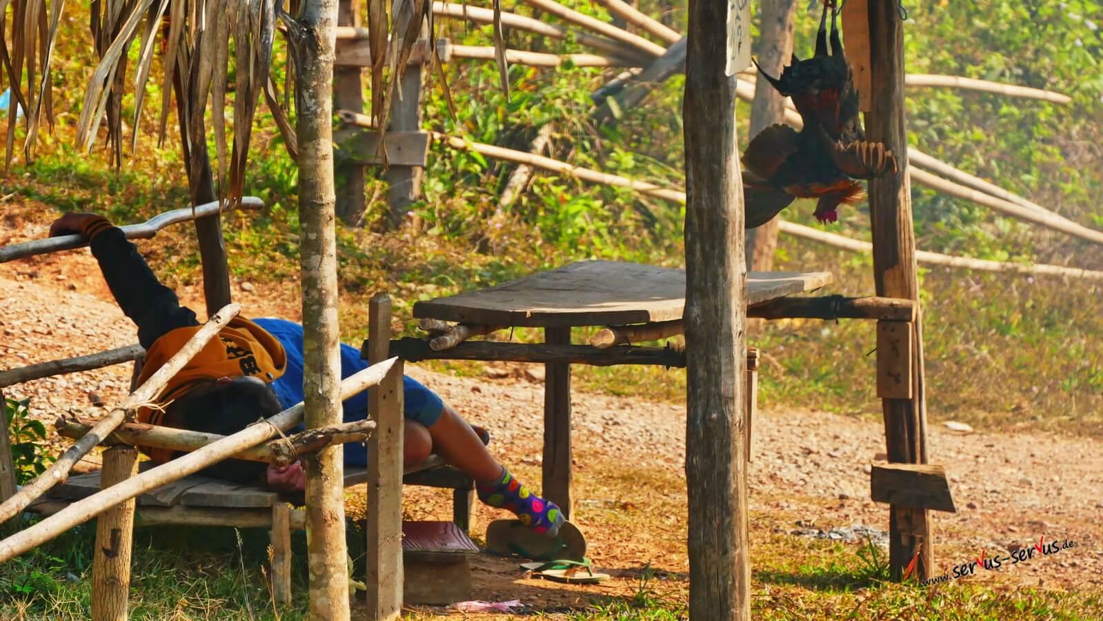 Totes Huhn am Straßenrand auf dem Weg nach Vientiane