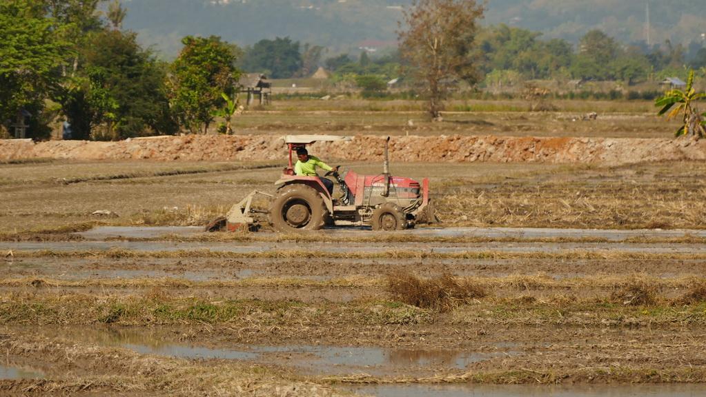 reisfeld-thaton-traktor