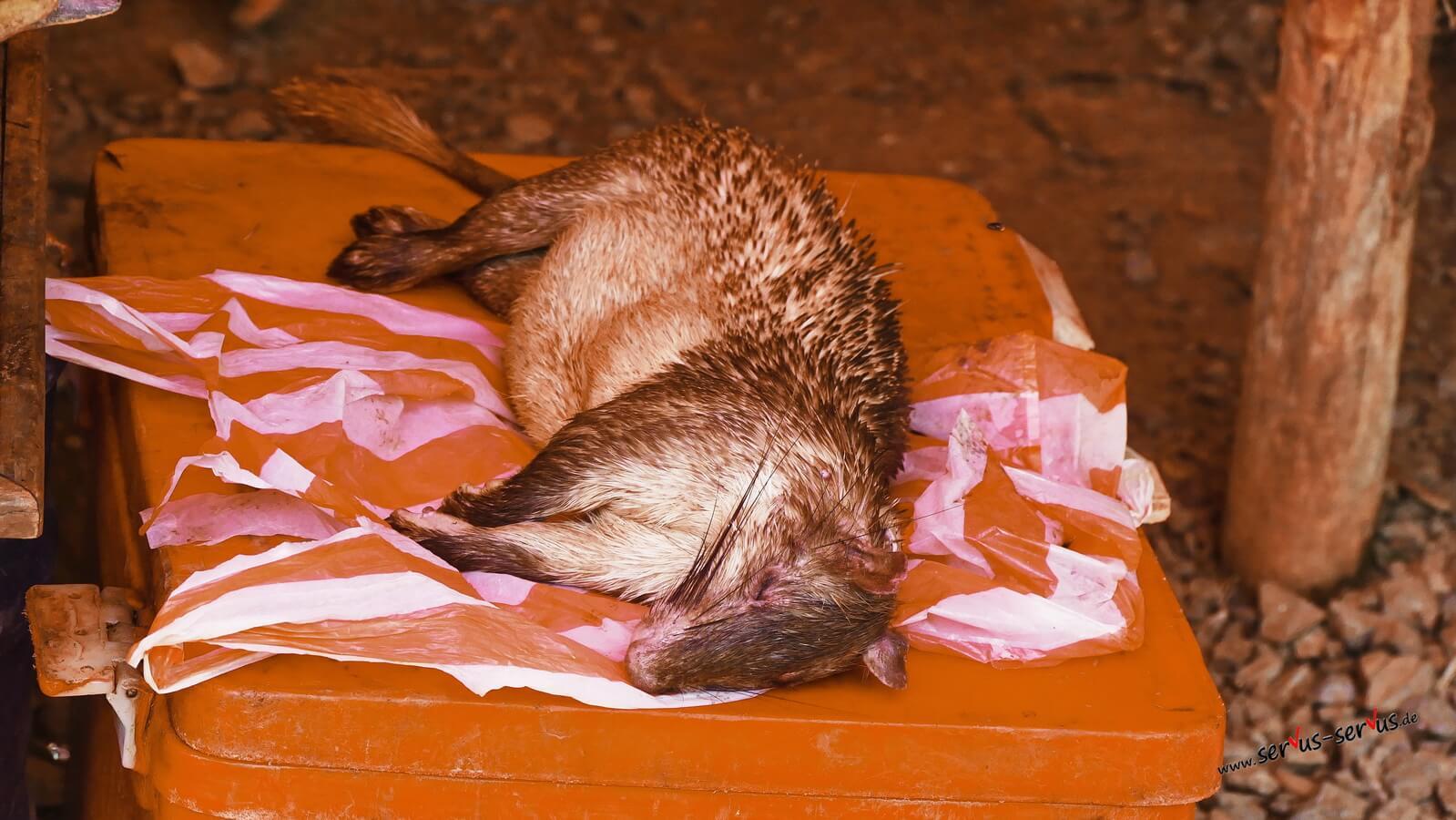 Tote Tiere auf dem Markt