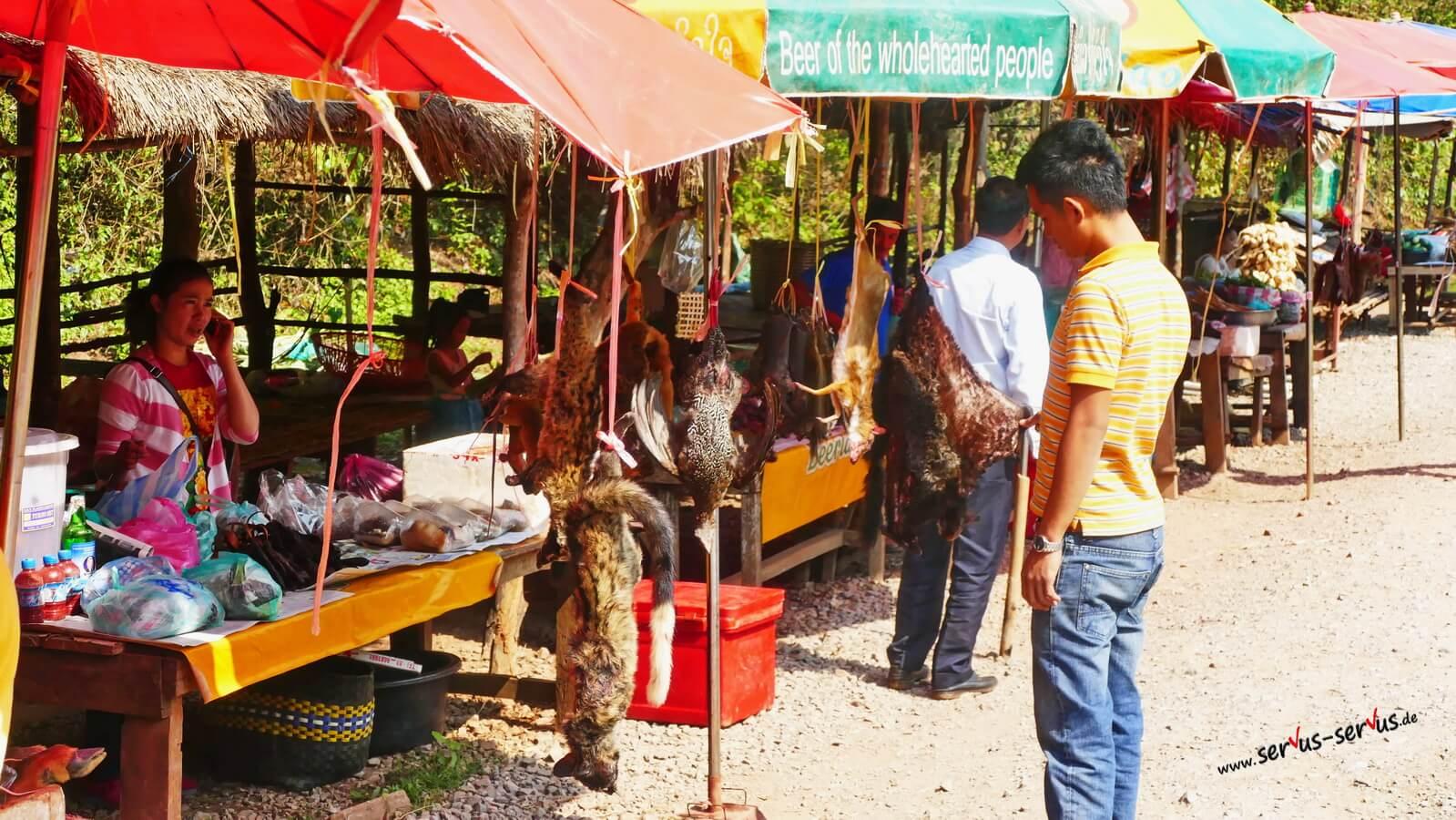 Das ganze Angebot auf dem Tiermarkt in Laos