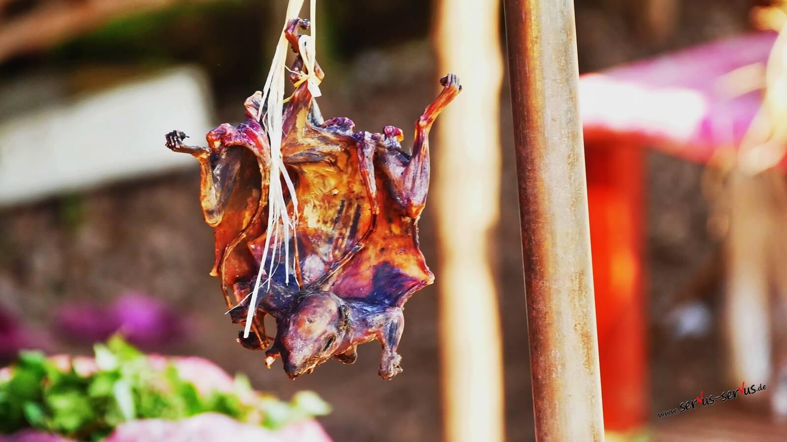 eine getrocknete Fledermaus auf dem Markt