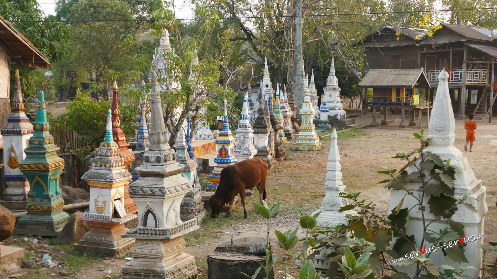 Freidhof, Tad Lo, Laos