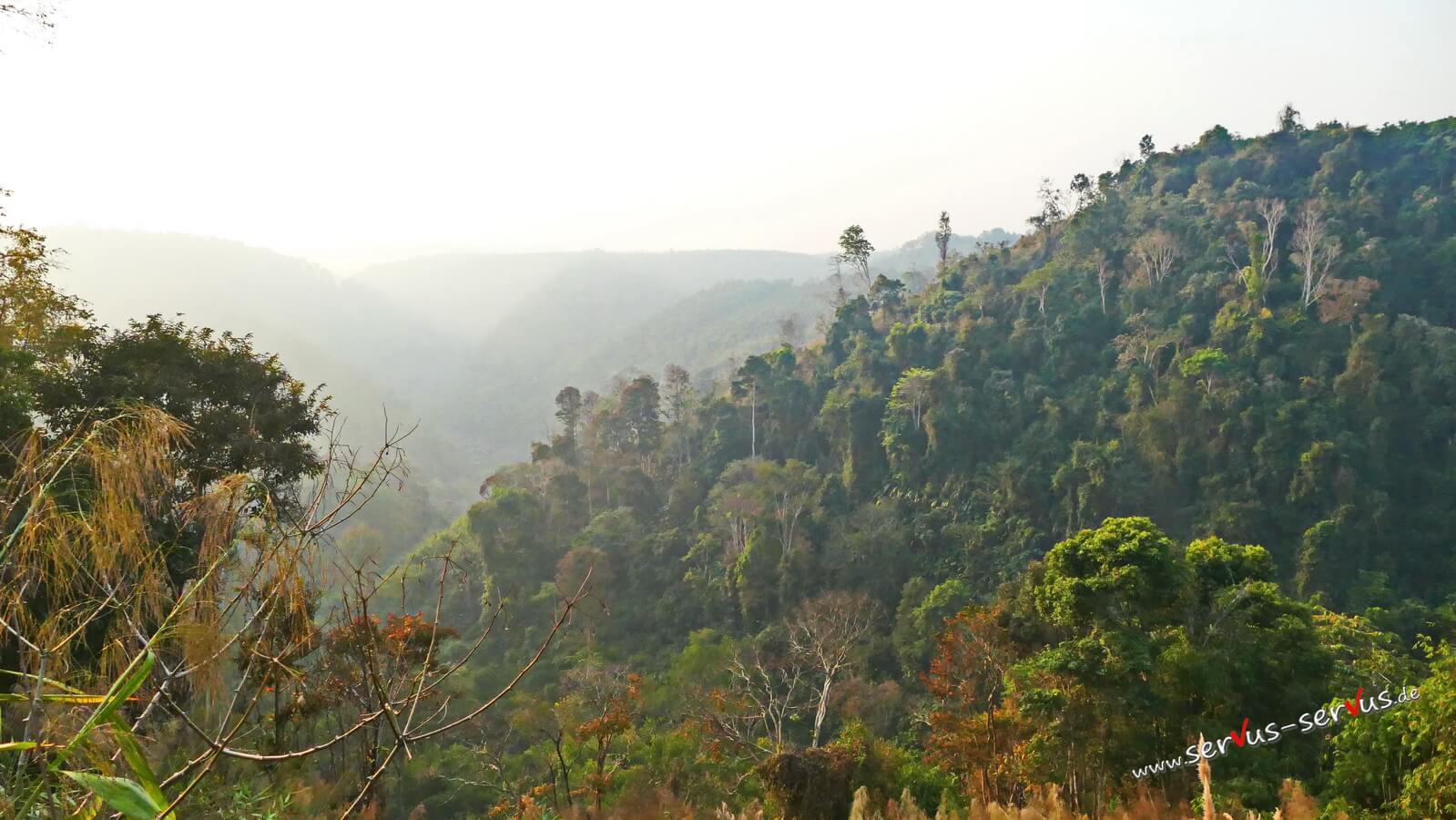 Dschungel, Berge, Laos, Bolavenplateau