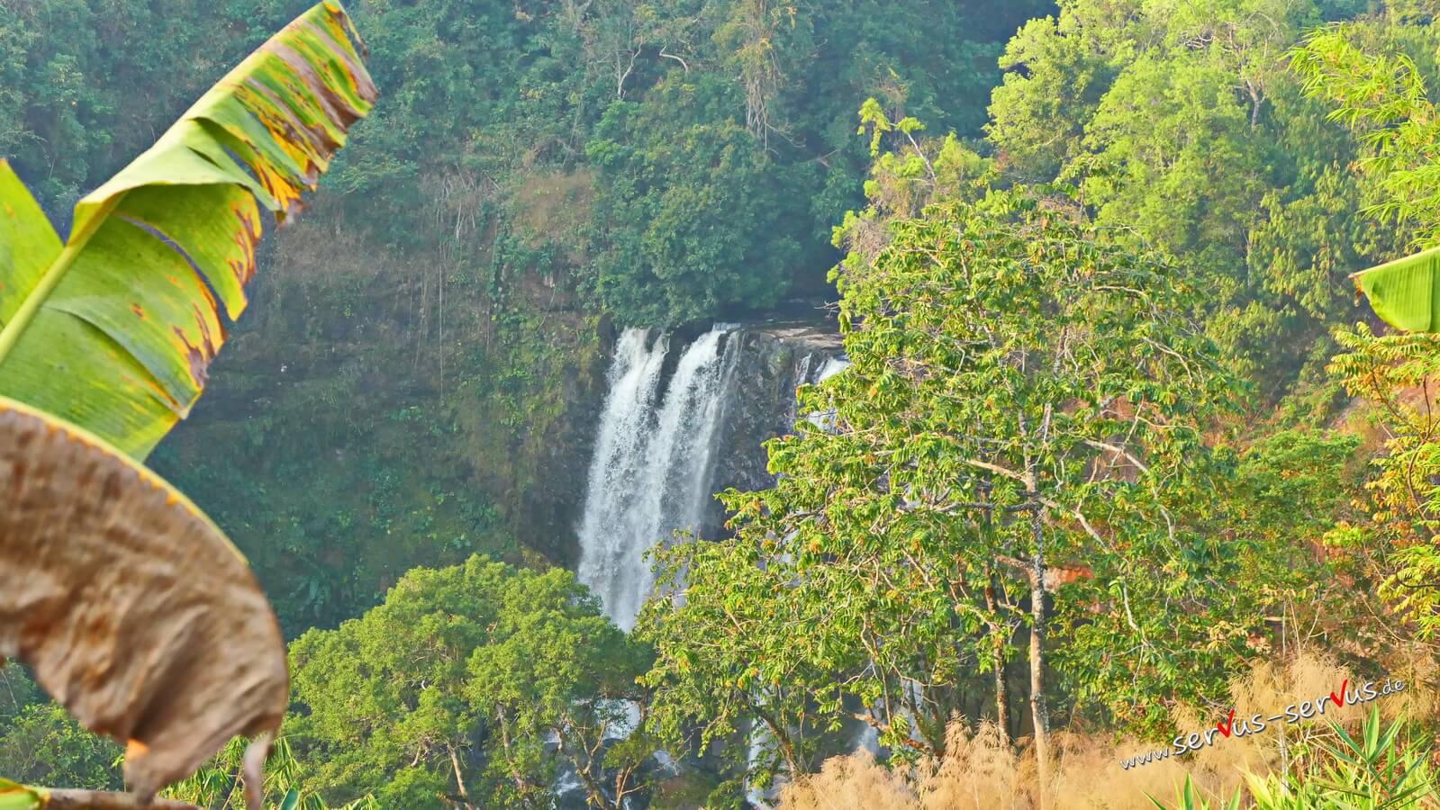 Tad Ta Wasserfall, Laos, Dschungel