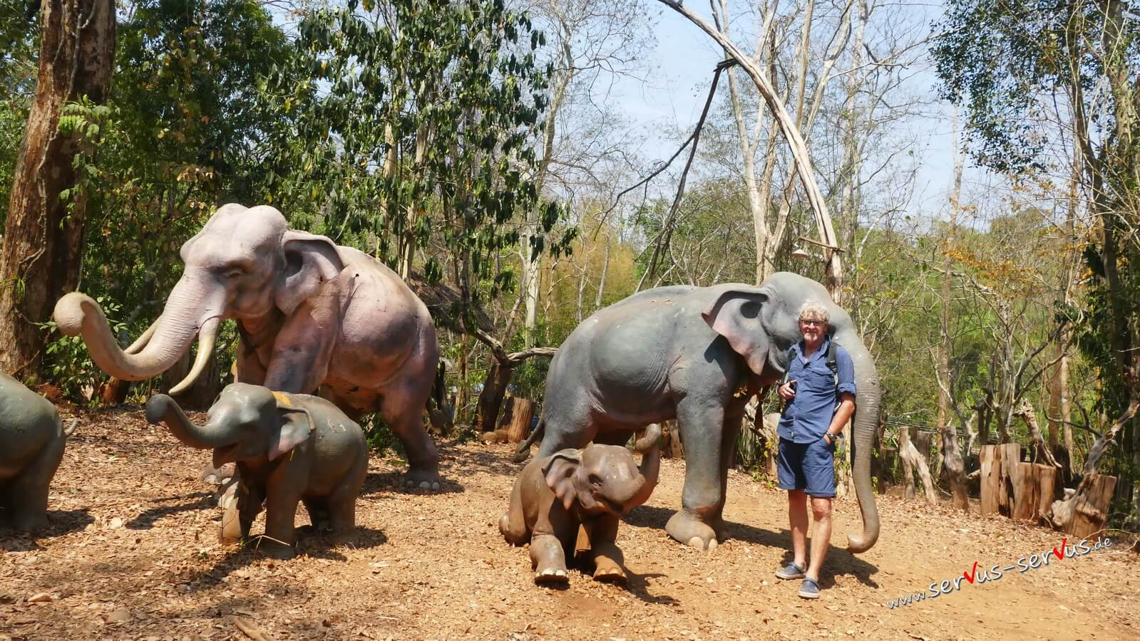Elefanten, Laos, Tad Pachuam, Bolaven