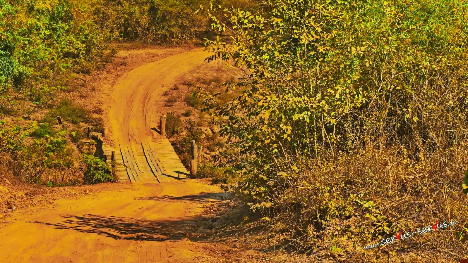 Abenteuerliche Brücke im Dschungel von Laos
