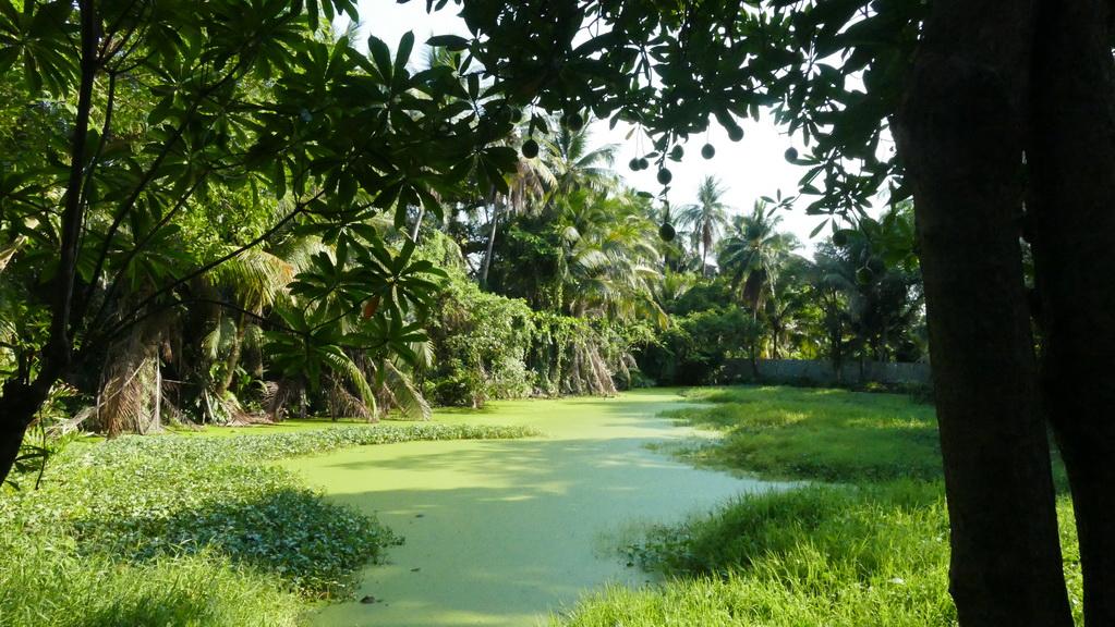 bangko-radtour-thonburi-04
