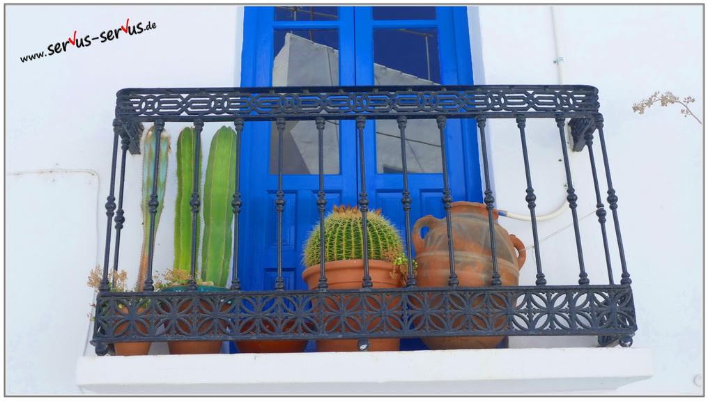 balkon-kaktus-blaue türe-fotoparade