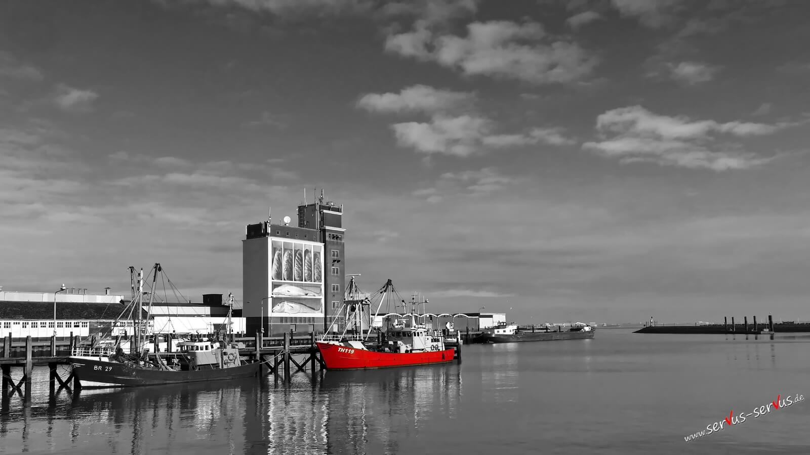 Fischerboot im Hafen von Breskens/Holland