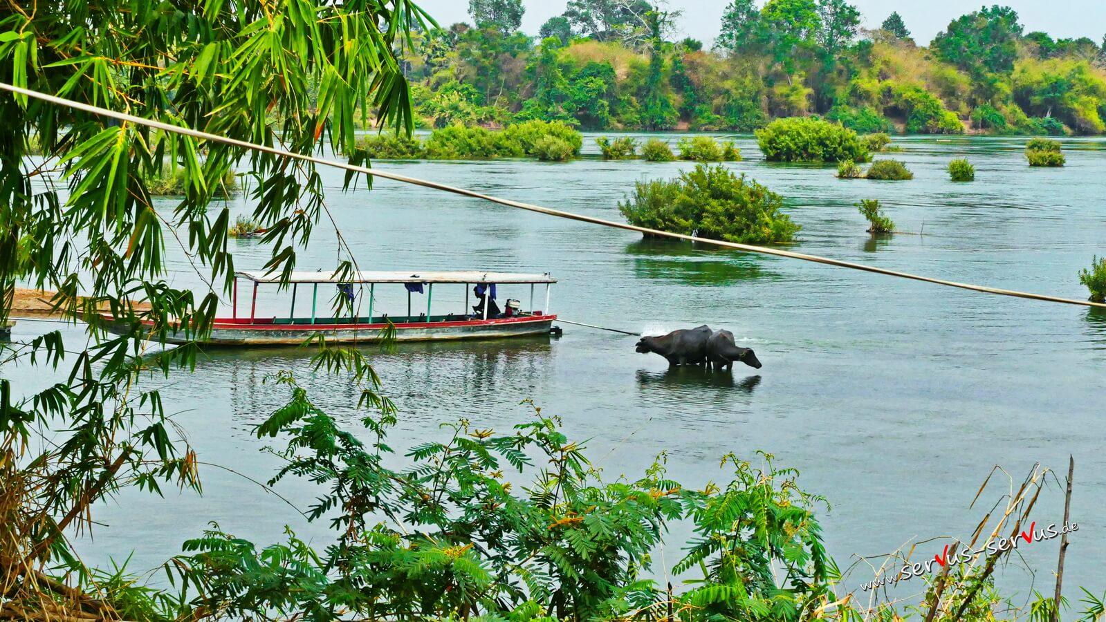 Boot auf dem Mekong, Don Det,